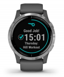GARMIN Vívoactive 4 Shadow Gray/Silver